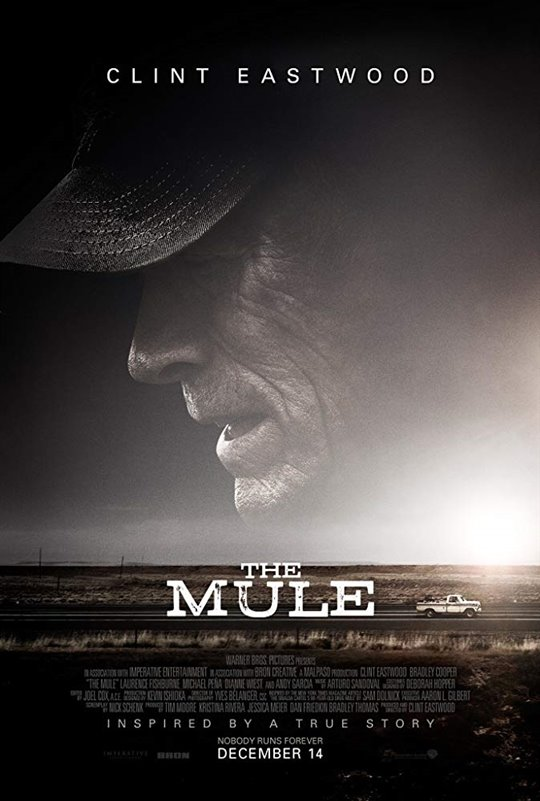 The mule 133017