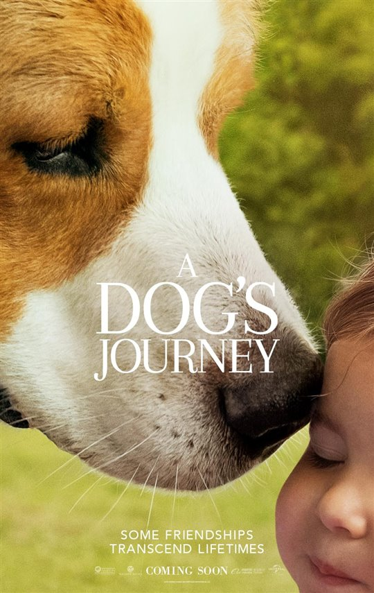 A DOG'S JOURNEY poster missing